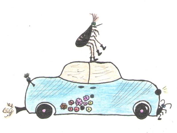 Blusa, tarakonas ir automobilis